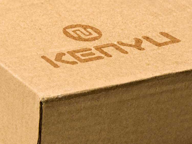Branding für Kenyu Solutions